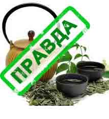 зеленый чай для похудения ласточка